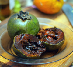 Diospyros digyna Black Sapote, Chocolate Pudding Tree