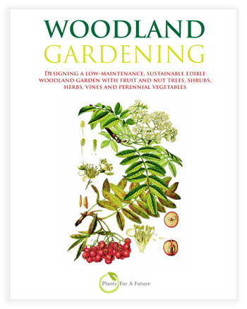Edible Plants Book. Woodland/Forest/Organic Gardening