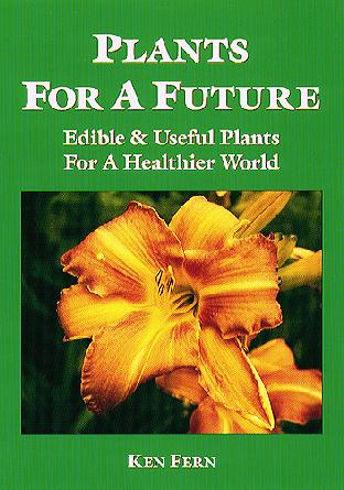 How Plants Are Useful To Us Plants As Resources Sol 2.8 Plants Are Useful  Plants Give