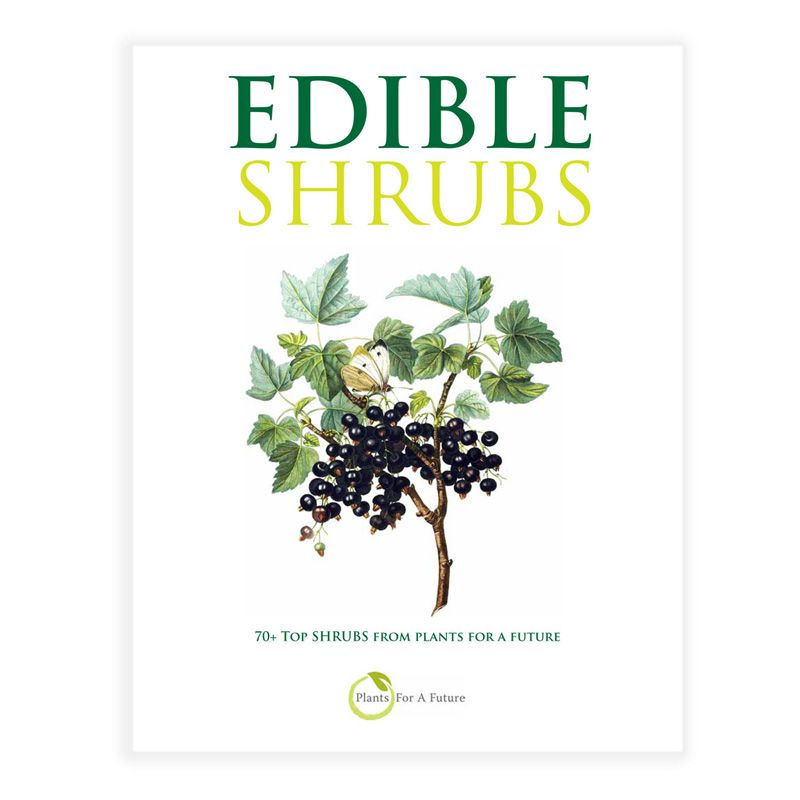 Edible Shrubs Book