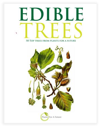 Edible Trees/Edible Plants Book