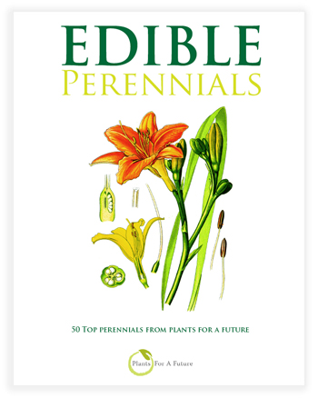 Edible Perennial Book